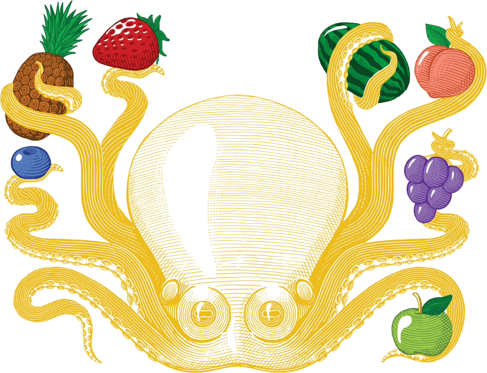Drawing of NFuzed octopus holding fruit