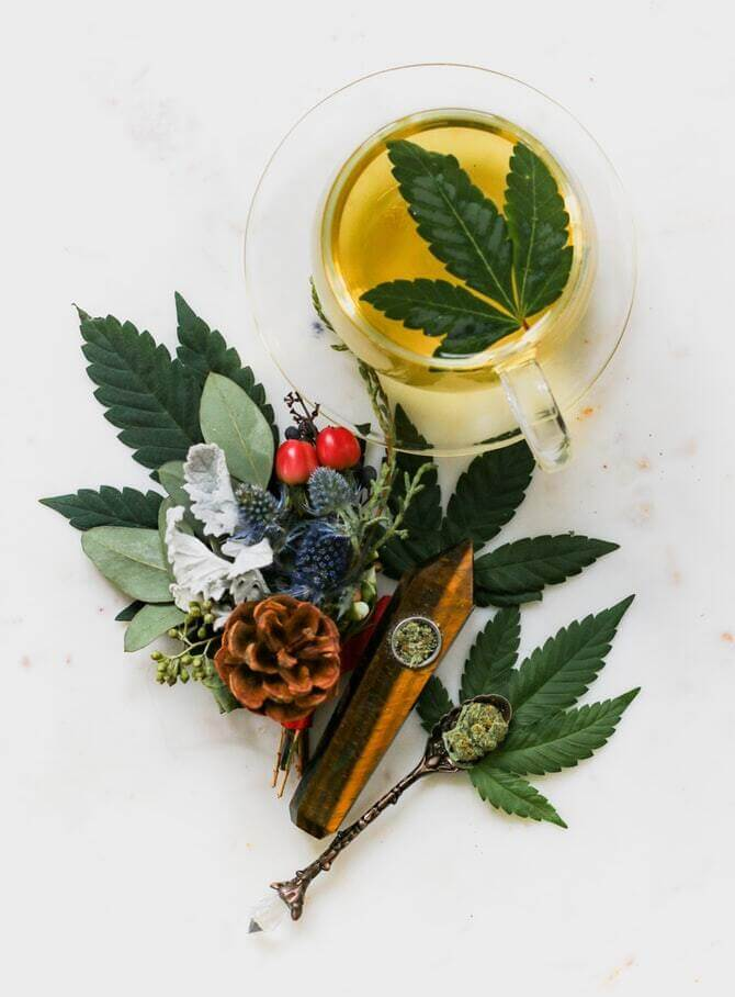 What is the difference between THC and CBD in marijuana herbal tea.
